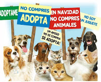 NO COMPRES