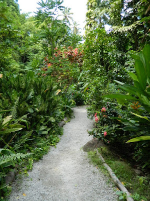 Diamond Botanical Gardens down a path Soufriere St. Lucia by garden muses-not another Toronto gardening blog