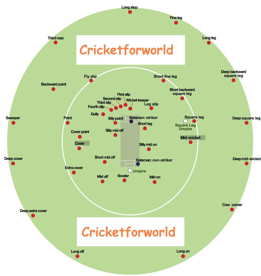 cricket fielding positions A Diagram of a Crickets Body