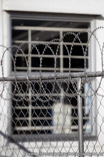 Razor wire on a dairy photograph