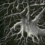 """""""Mystery Tree"""""""