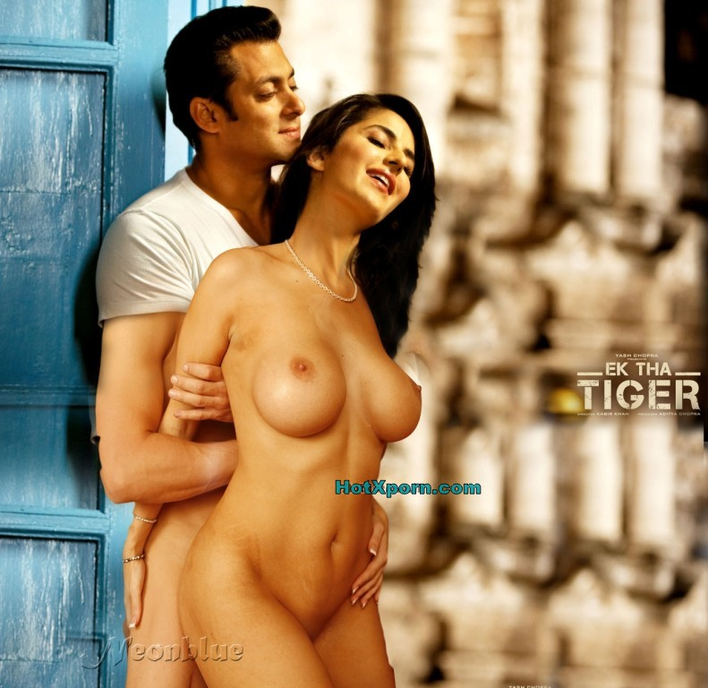 Nude Salman Undressed Katrina Kaif Makes Her Naked They Caught Romancing On Sets Of Ek Tha Tiger Fake