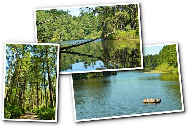Victoria BC Tourist - Thetis Lake Woods