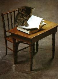 Solo el que lee vive más de una vida