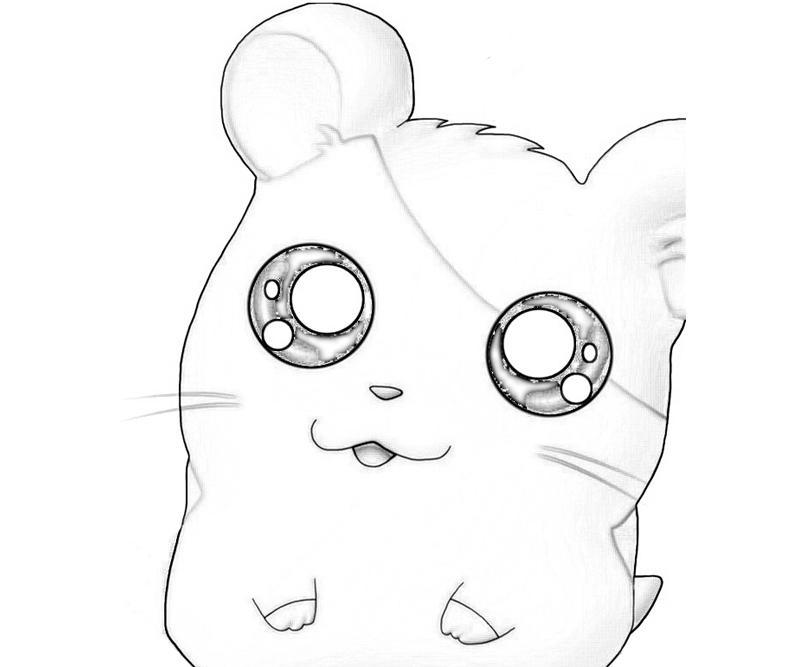 hamtaro-ham-hams-unite-hamtaro-wow-coloring-pages
