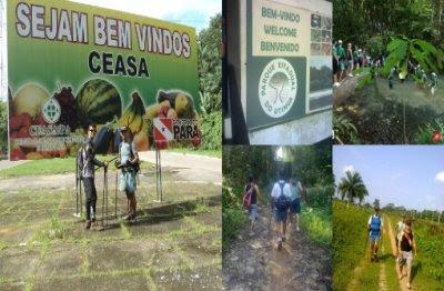Trilha Ceasa - Utinga no parque do Utinga