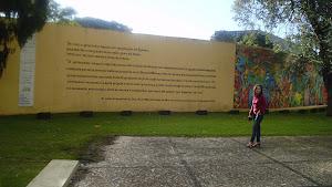 Eu na minha linda Curitiba