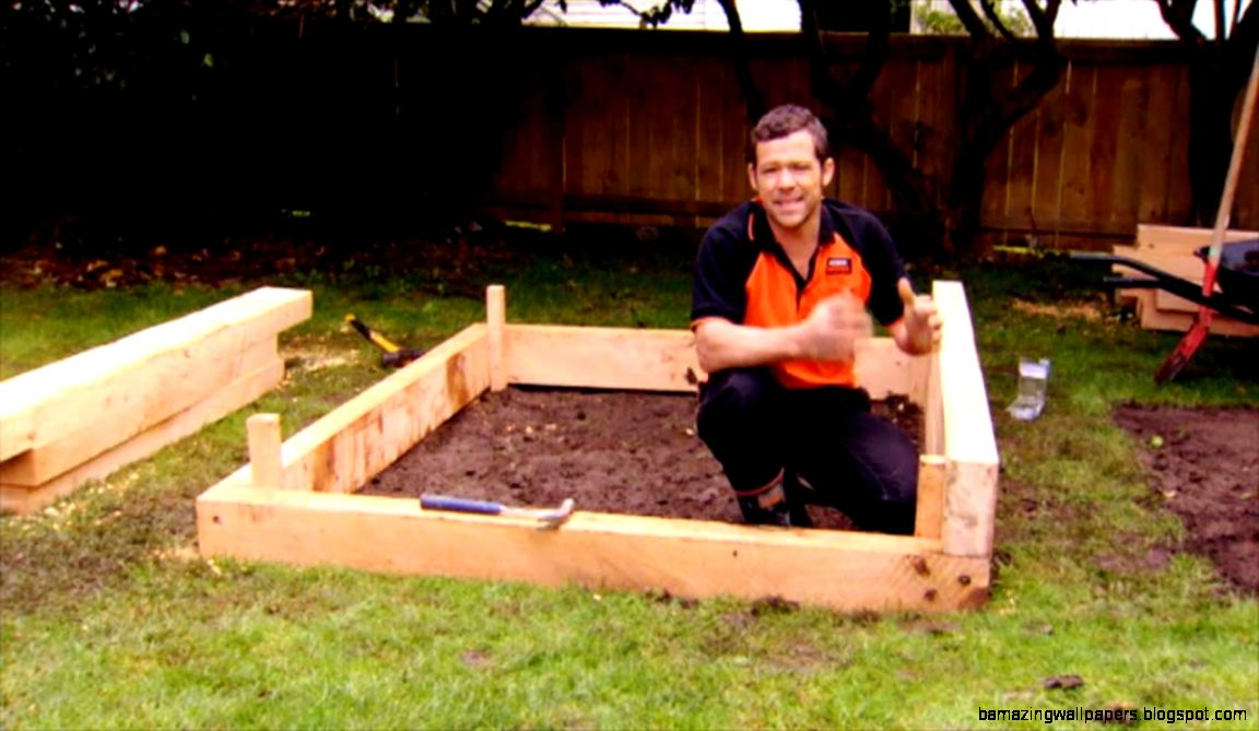 Raised Vegetable Garden Kits New Zealand  The Garden Inspirations