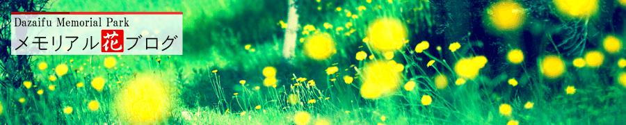 メモリアル花ブログ