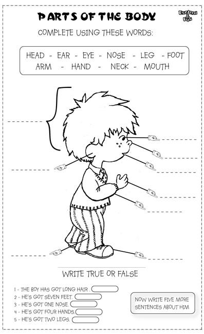 grade math worksheets pie charts and graphs worksheets blank bar graph ...