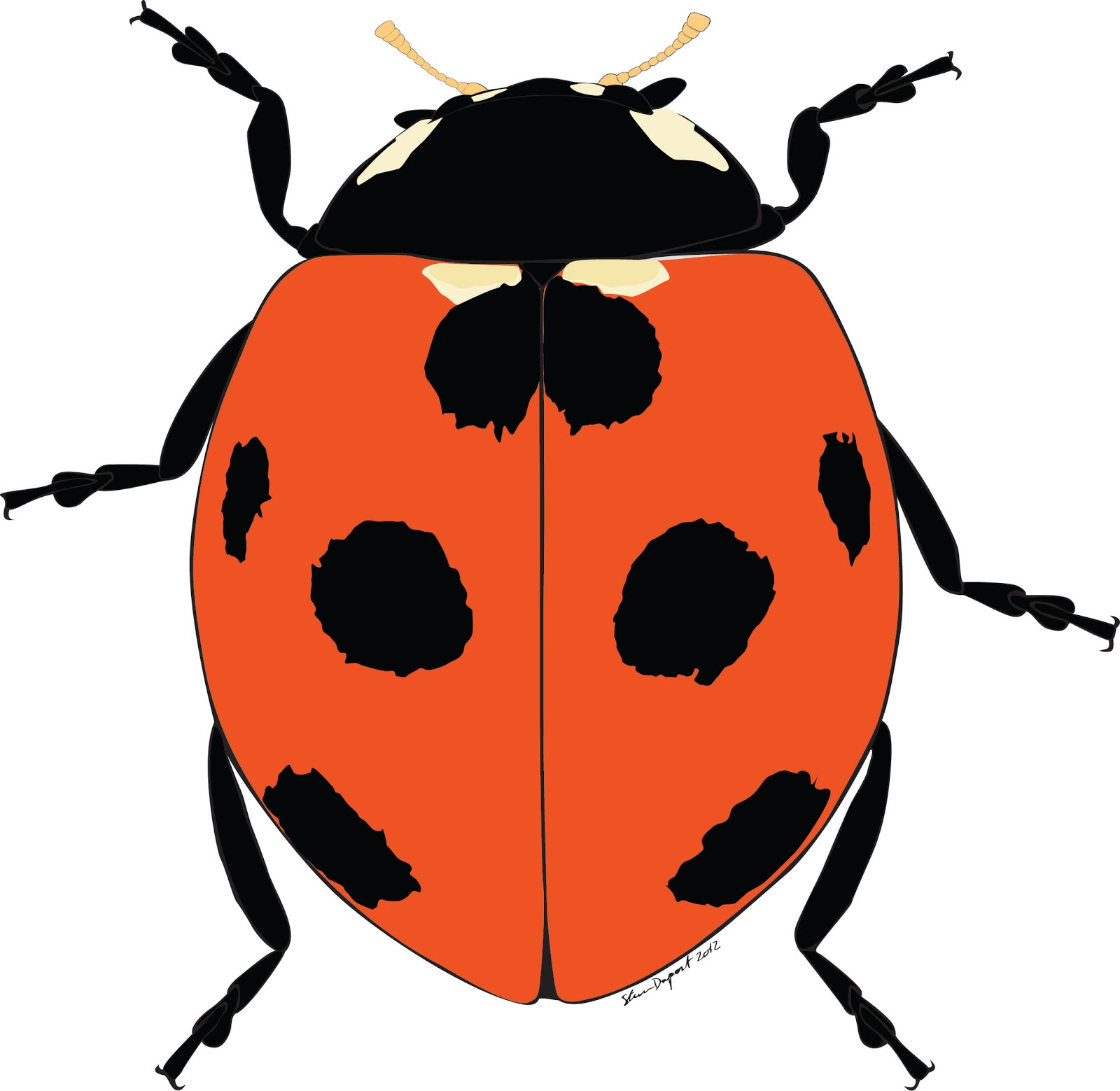 Find Lady Bug Natural Brand Products - Fertilizer ...