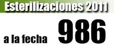 Hasta la Fecha 2011