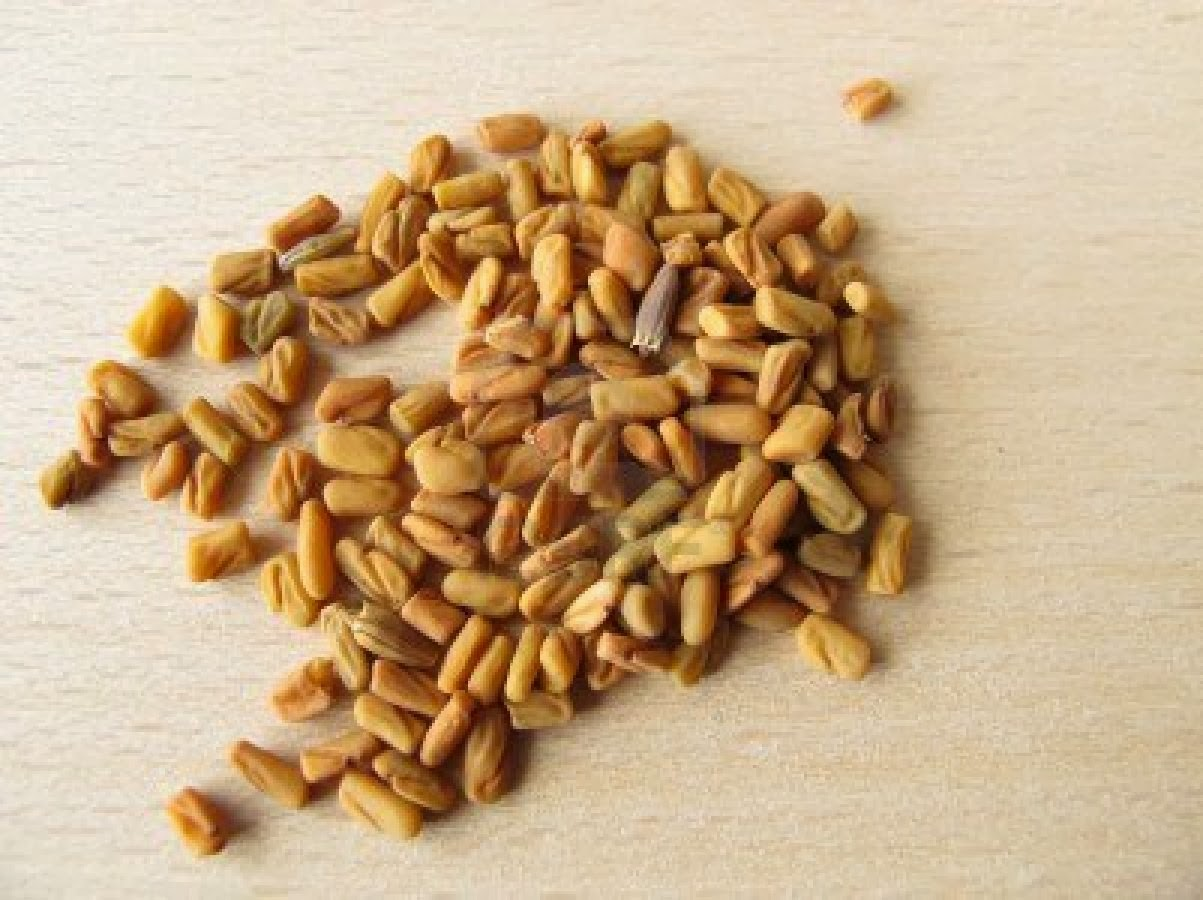 Fenugreek in Diabetes