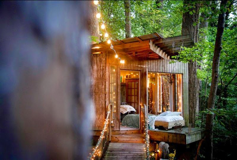 cabaña colgada en los árboles