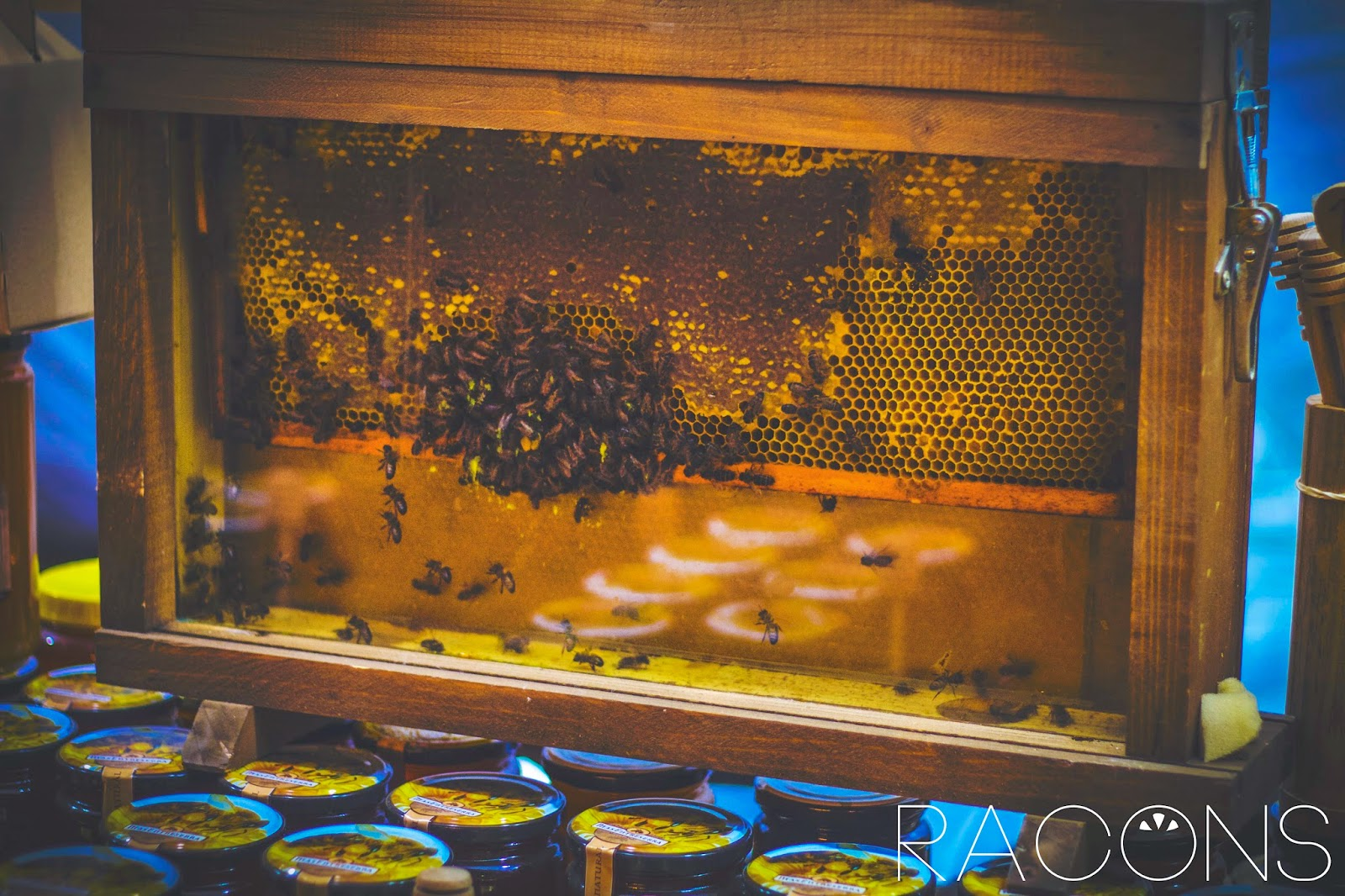panal abelles paradeta artesans fires de girona