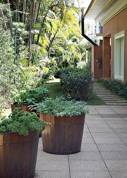 flores para jardim que aguentam sol ? Doitri.com