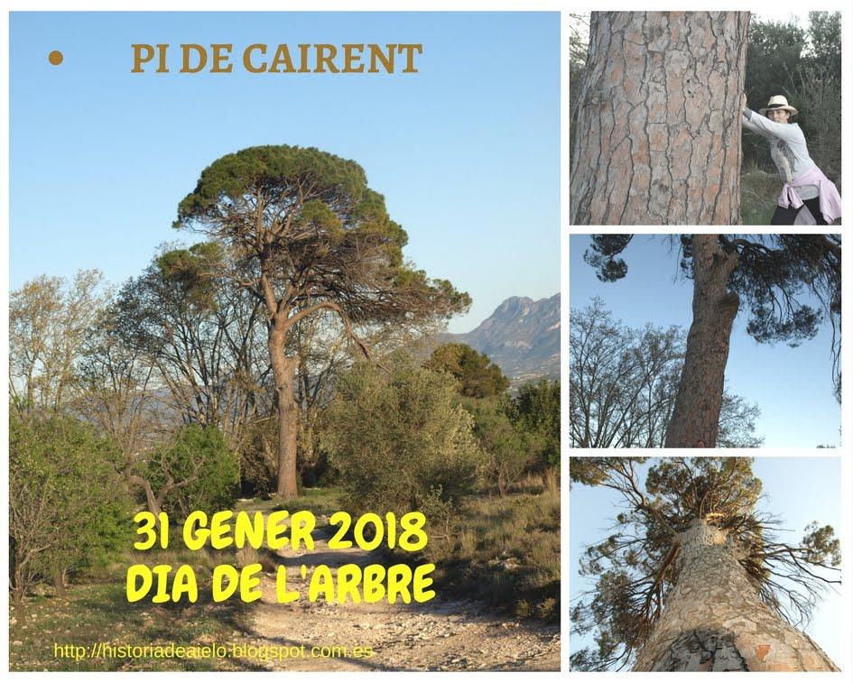 31 gener 2018. DIA DE L'ARBRE