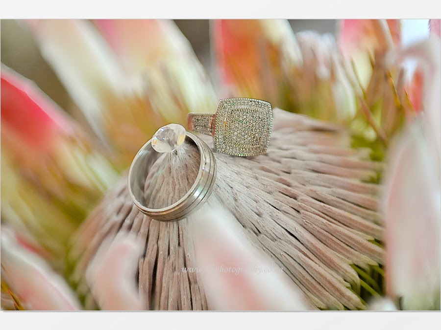 DK Photography Slideshow-0133 Noks & Vuyi's Wedding | Khayelitsha to Kirstenbosch  Cape Town Wedding photographer