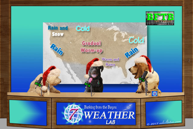 BFTB NETWoof Weather with U.S forecast