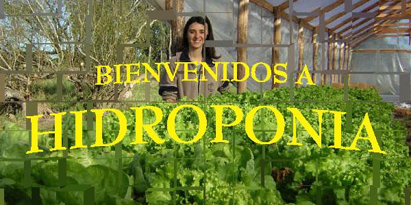 """""""La Hidroponia"""""""