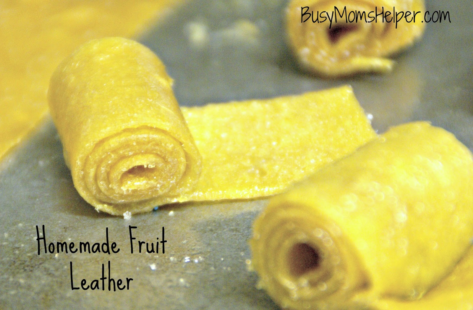Homemade Fruit Leather - Busy Moms Helper