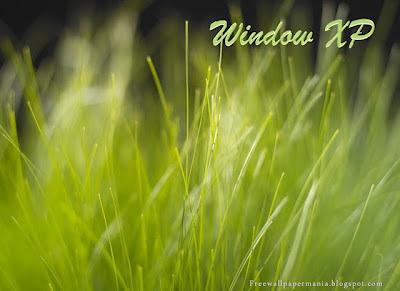 Nature Windows Xp Wallpapers
