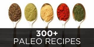 Get Over 370 Paleo Recipes With The #Paleo #RecipeBook