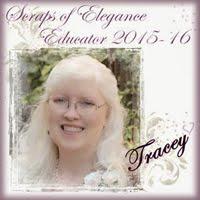 Scraps of Elegance Educator