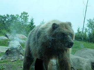 Minnesota Zoo