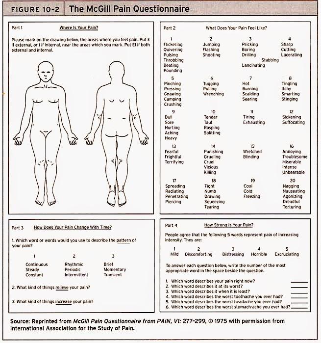 scale factors worksheet