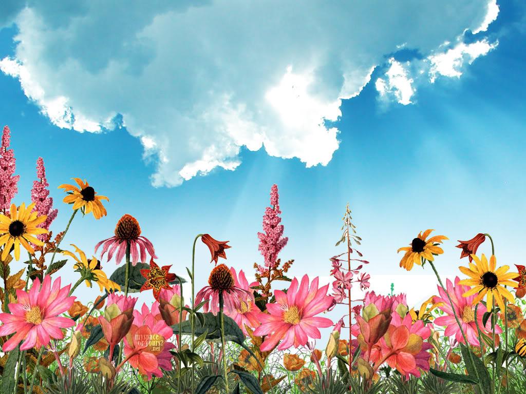 http://3.bp.blogspot.com/-Fzr10vcsYKY/T97EBGhdAzI/AAAAAAAAAOs/Su1_hHy4eaE/s1600/S2_S2nd_Acrostico_acrostic_wallpaper_fondo_de_pantalla_cielo_2nd_mujer_hombre_rima_dedicado_regalo_HD_ejemplo__jardin_rosa_Pink_Garden_Blue_Sky_Spring_primavera_rosada.jpg