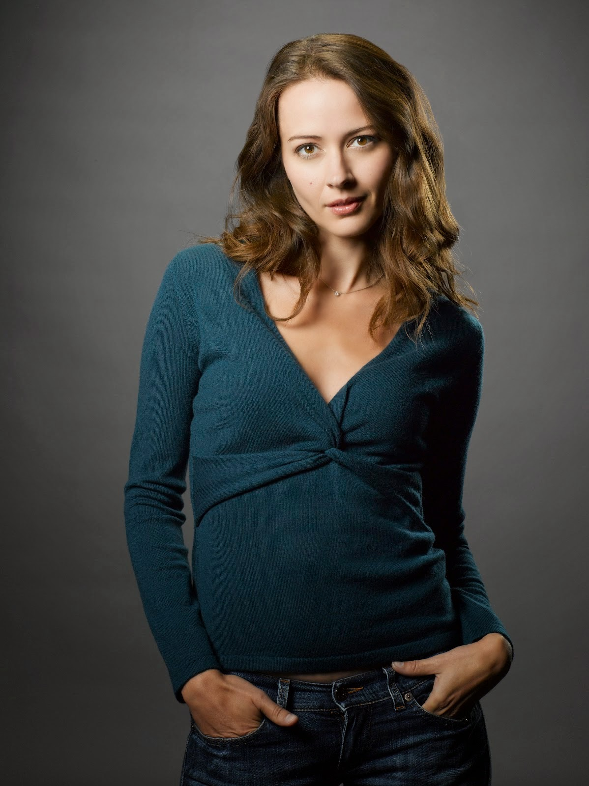 hollywood actress wallpaper: amy acker wallpapers