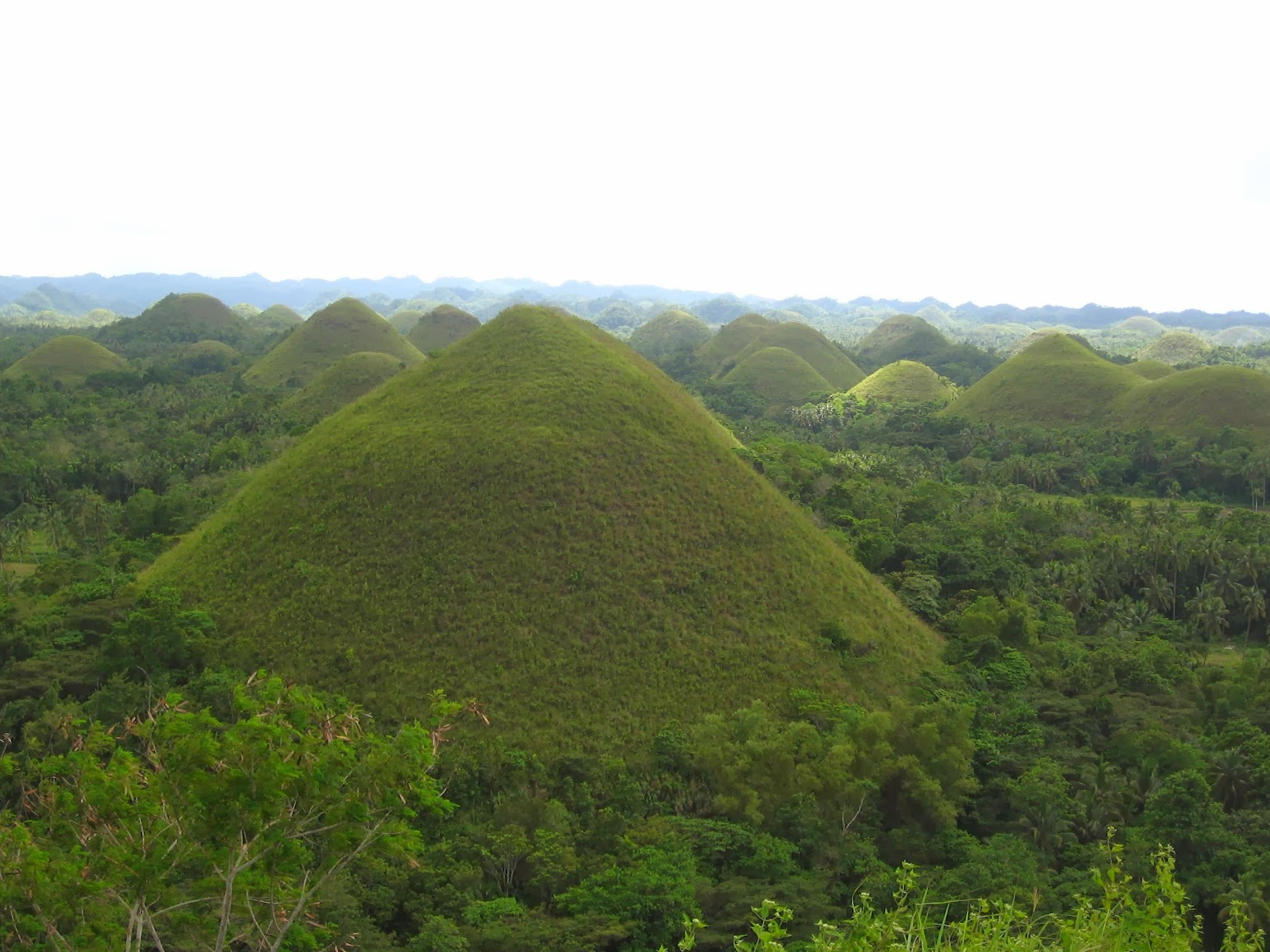 Chocolate Hills Philippines Unbelievable Info