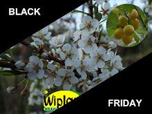 BLACK-FRIDAY en hel vecka!
