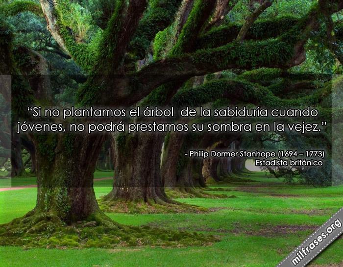 Si no plantamos el árbol de la sabiduría cuando jóvenes, no podrá prestarnos su sombra en la vejez. Conde de Chesterfield