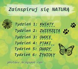 """Projekt """"Zainspiruj się naturą"""""""