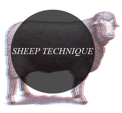 Sheep Technique