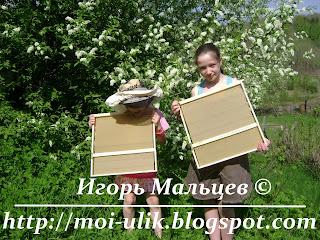 Дочери с навощенными рамками около цветущей черёмухи
