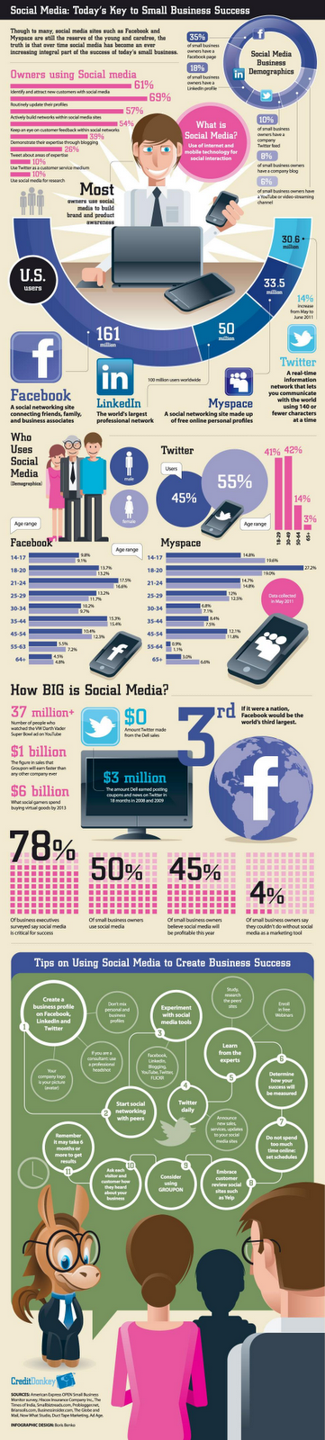 social media business demographics