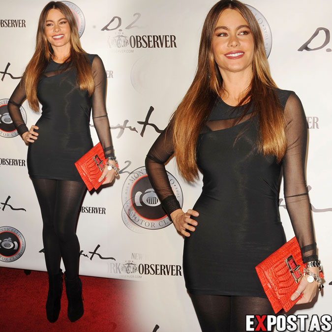 Sofia Vergara: Domingo Zapata VIP Art Reception em New York - 24 de Outubro de 2012