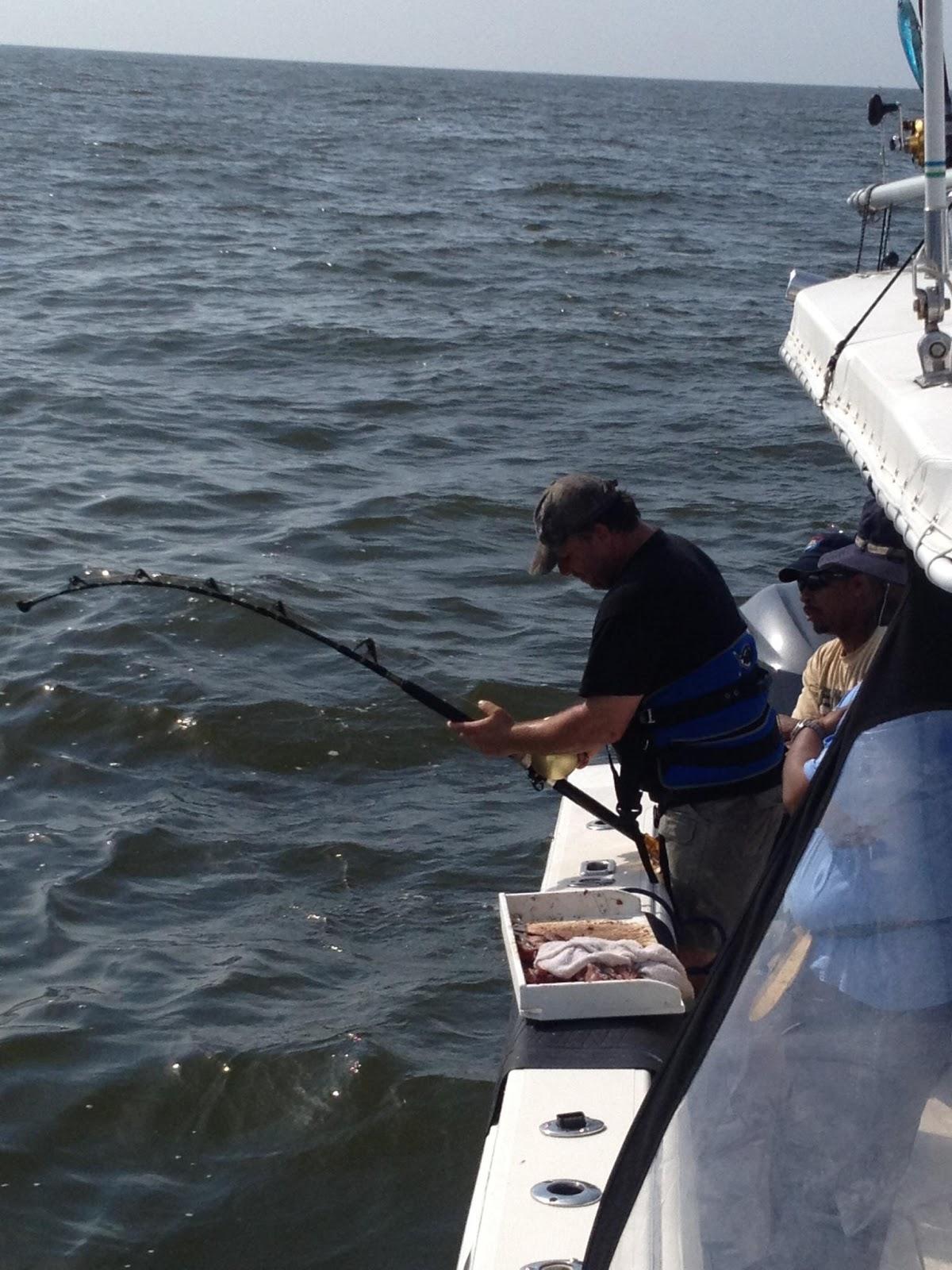 Venice la offshore tuna fishing reports for Venice louisiana fishing report