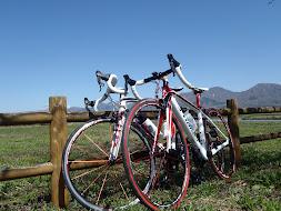 蒜山サイクリングロード