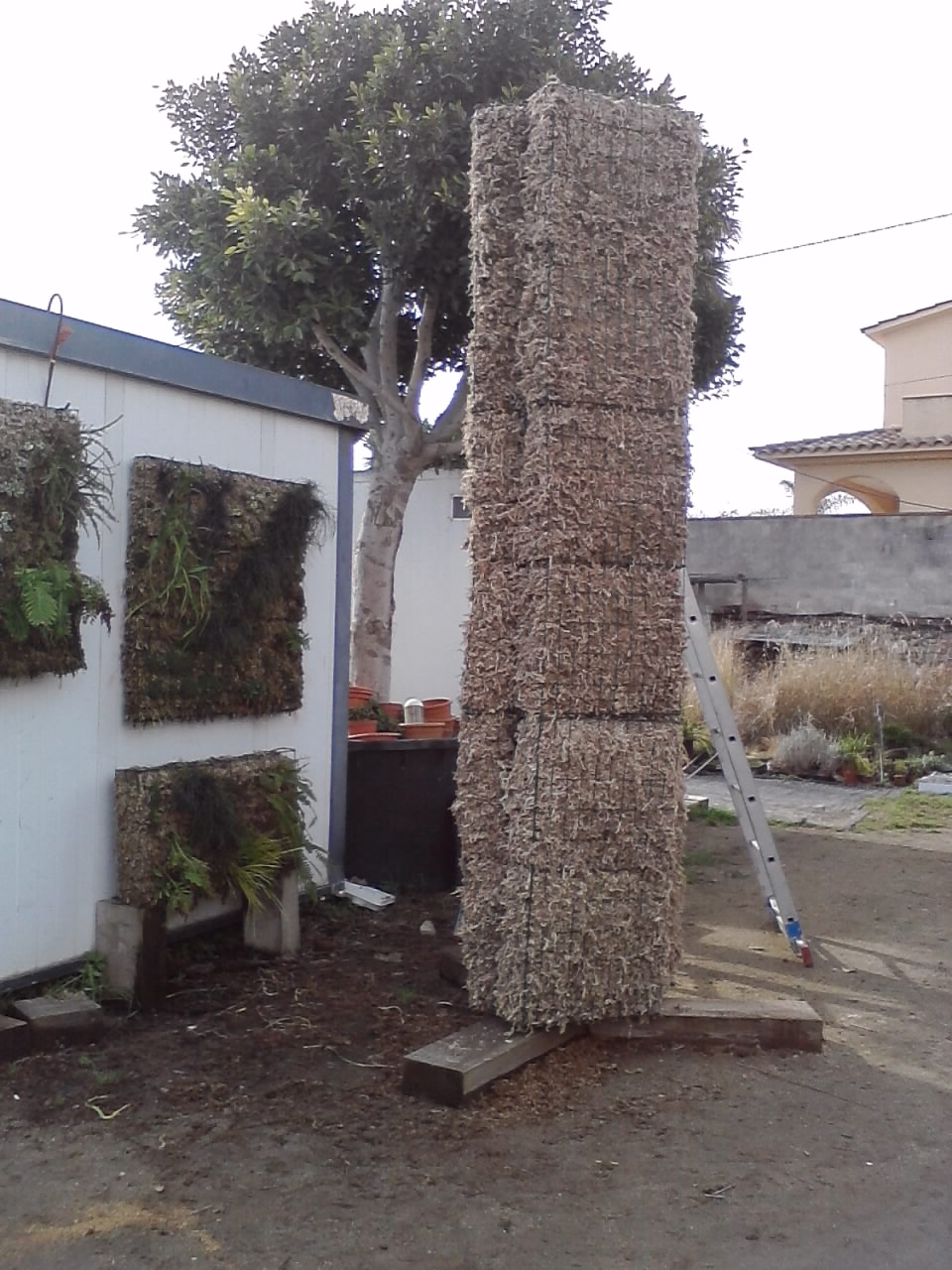 Arrels jardines verticales muestras del crecimiento - Estructura jardin vertical ...
