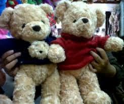 Gambar boneka teddy berpasangan keren