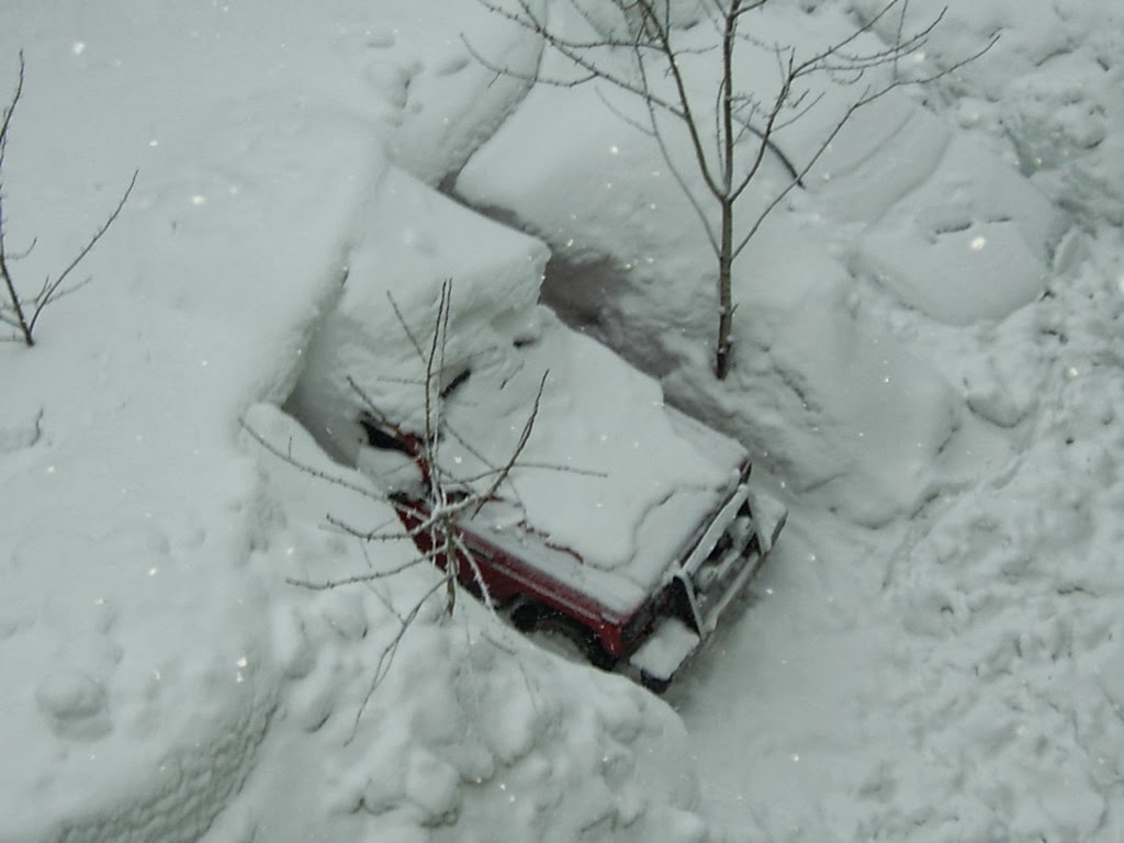 Even once you dig out your car (and make it out of a 5 story building covered in snow), actually getting to a road would be tricky.
