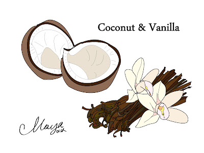 coconut and vanilla illustration