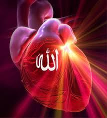 Sebutlah nama Allah yang menjadikan manusia dari segumpal darah (QOLBUN-HATI)