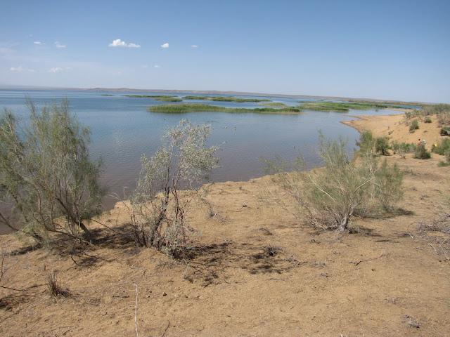 Uzbekistán, lago Aydarkul