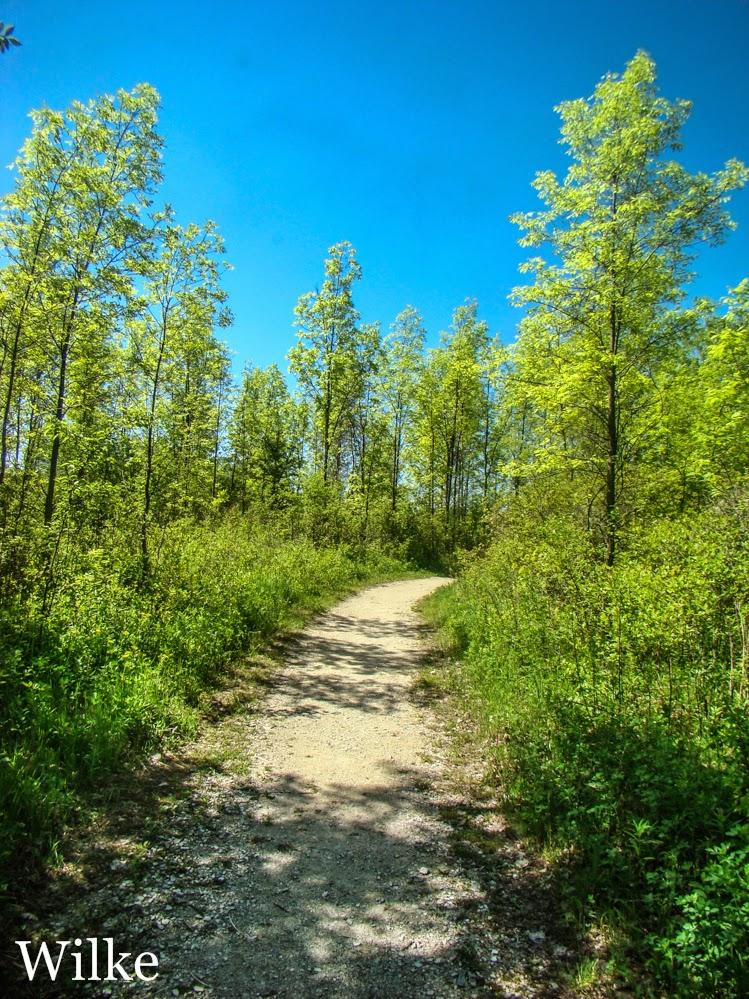 Grobschmidt Park walking trail.