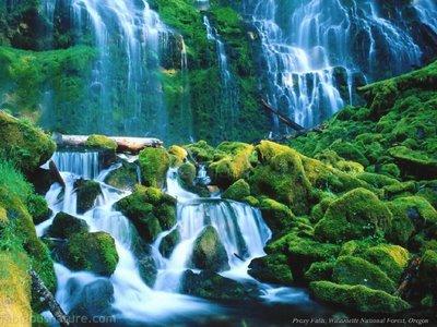 wallpaper zh fabulous nature pictures